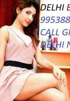 Call Girls In Lajpat Nagar Escort Service |+91-9953882338| Night Call Girls Delhi/Ncr